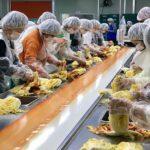 ディムチェ食品工場でキムチ作り体験(大人の修学旅行編)