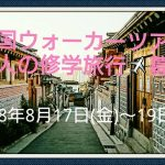 「韓国ウォーカーツアー」大人の修学旅行'18夏~ソウル市場&韓国料理教室~