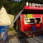曽島にある韓国最大の太平塩田の塩アイスクリーム③大人の修学旅行