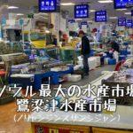 ソウル ノリャンジン水産市場を覗いてみた〜追記あり〜