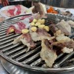 三角地で有名な「平壌家」でホルモン焼肉
