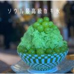 マジで凄っ!ソウルの最高級カキ氷「朝鮮パレスソウル江南」